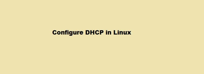 Configure DHCP on Linux
