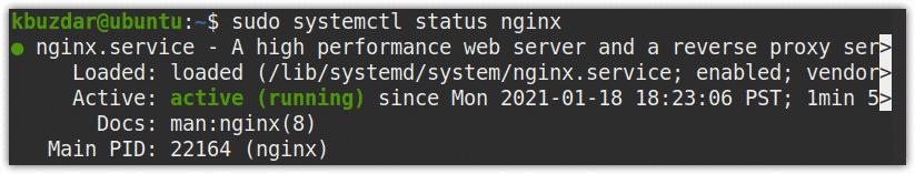 Nginx service status
