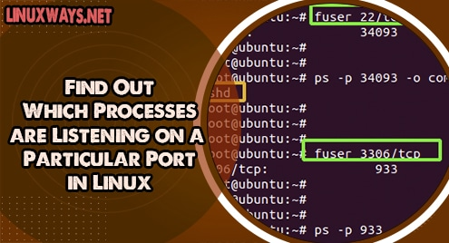 Find Out Which Processes are Listening on a Particular Port in Linux