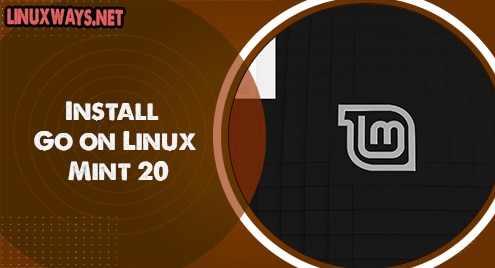 Install Go on Linux Mint 20