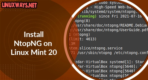 Install NtopNG on Linux Mint 20