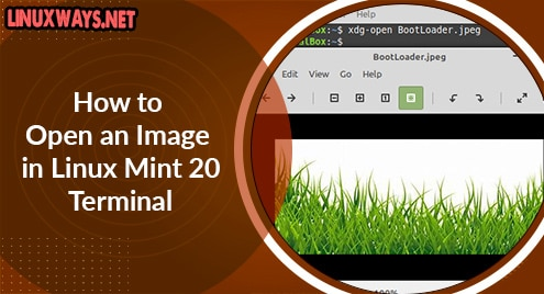 How to Open an Image in Linux Mint 20 Terminal
