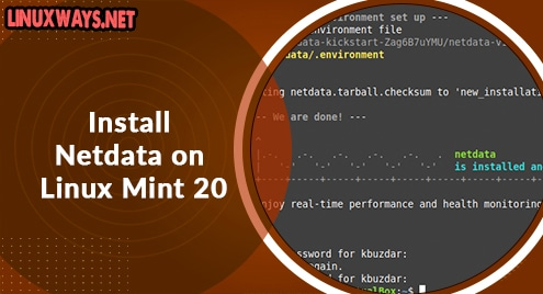 Install Netdata on Linux Mint 20